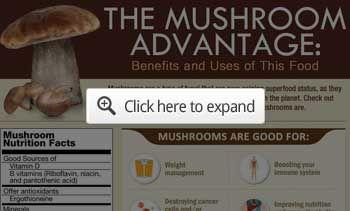 Why You Should Be Eating More Porcini Mushrooms
