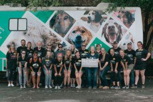 Rescue Rebuild and MuttNation Foundation Team Up To Help Get Senior Dogs Adopted