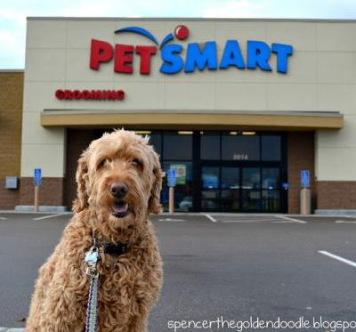 Pamper Your Pet at PetSmart PetSmartGrooming