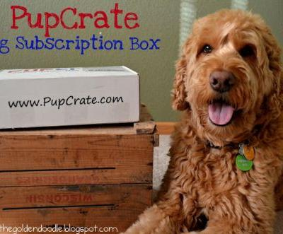 PupCrate November 2015 Edition