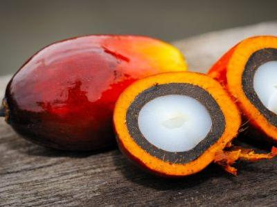 Red Palm Oil Benefits the Heart & Brain but Is It Bad for the Environment?