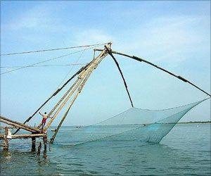 People Working in Fishing Industry Have Poorer Health: Study