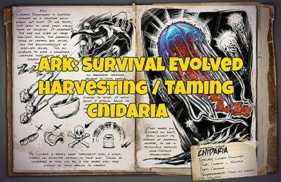 ARK: Survival Evolved Cnidaria Harvesting Strategy