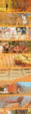 9 Ways to Celebrate Fall with your Dog