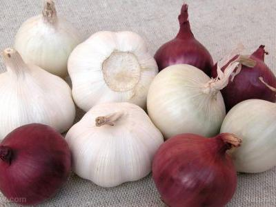 Time for a second serving: Garlic and onions reduce the effects of a high-fat diet