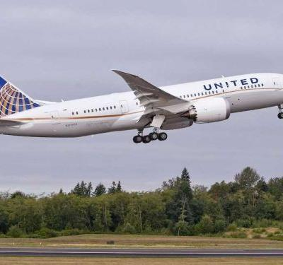 United put another family's pet dog on the wrong flight forcing the airline to divert the plane