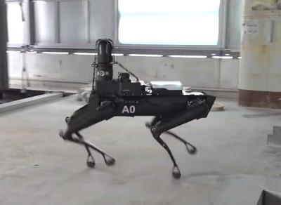 How do you like the idea of a robot dog as a work colleague?