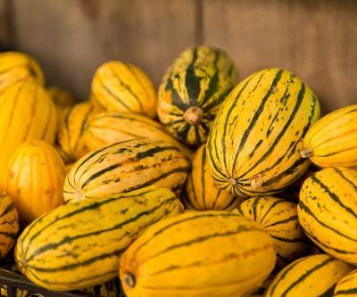 Have you tried delicata squash yet?