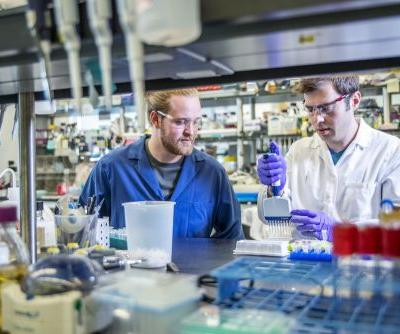 Faster, Cheaper, Better: A New Way to Synthesize DNA