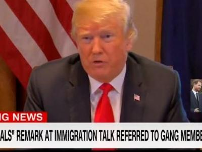 Trump Rails Against Media For Reporting He Called Immigrants 'Animals': 'Fake News Got it Purposely Wrong'