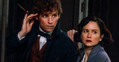 Fantastic Beasts Blasts Past $800M at the Worldwide Box Office