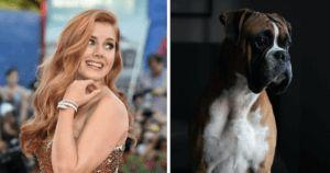 Amy Adams Plays A Woman Turning Into A Dog In Upcoming Film
