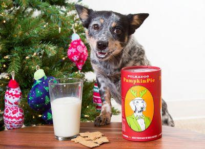 9 Treats And Toys For Dogs Who Can't Resist A Midnight Snack Attack