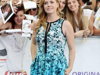 Amy Adams Wore A $50 Vince Camuto Dress On The Red Carpet