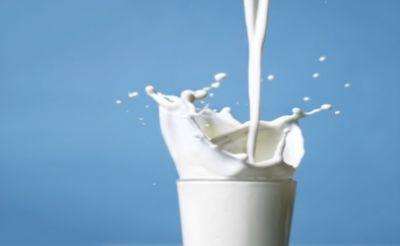 Alaska legislature considers bill to legalize some raw milk sales