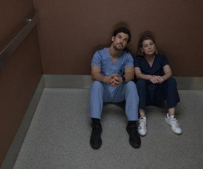 Can't Get Enough Grey's Anatomy? ABC Just Extended Season 15!