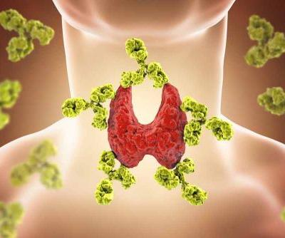 What Role Does Diet Play in Thyroid Health?