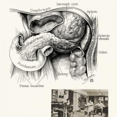 From the 4th Century BC to now, Medical Illustration Clarifies Medical Practice