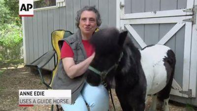 Payback: Blind woman nurses sick guide horse back to health