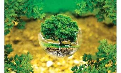 World Nature Conservation Day 2020: Small steps we should follow to protect and conserve nature