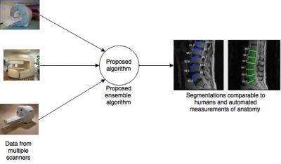 Multi-Parameter Ensemble Learning for Automated Vertebral Body Segmentation in Heterogeneously Acquired Clinical MR Images