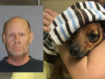 Police: Man blew off paw of neighbor's dog with a firecracker