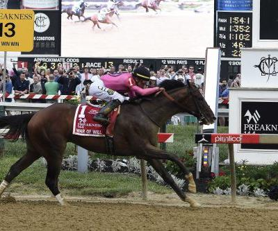 War of Will wins Preakness, Bodexpress ousts jockey at starting gate