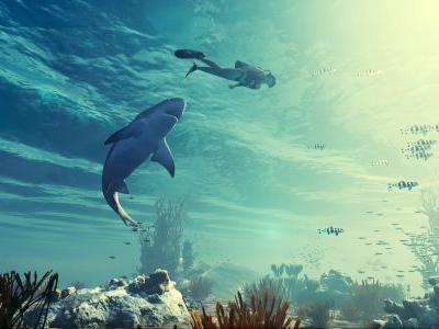 Action SharkPG Maneater Will Launch Exclusively for Epic Games Store