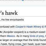 What's in a Name: Cooper's and Sharp-shinned Hawks