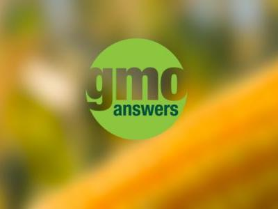What Health and Wellness Dietitians Want to Know About GMOs and Biotechnology