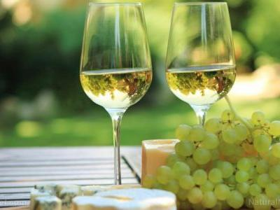 Health boost for wine: Researchers have developed a device to filter out the sulfites used for preservation