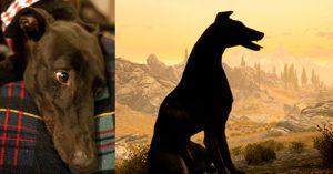 Man Memorializes His Departed Dog in Skyrim, Where He Can Live Forever