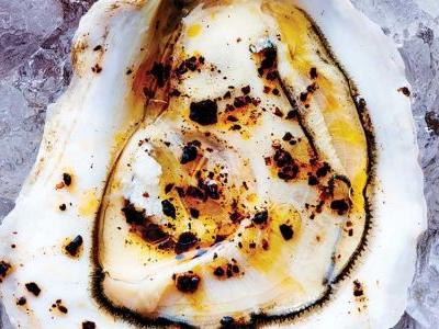 Broiled Oysters with Parmigiano and 'Nduja