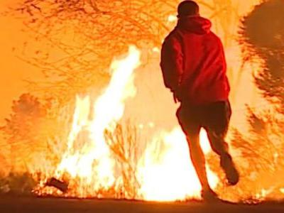 Rabbit jumps into wildfires, man panics