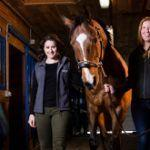 Worried about Your Horse's Nutrition?