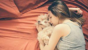 Study Suggests Letting Dogs Sleep In Bed Is Good For Chronic Pain Sufferers