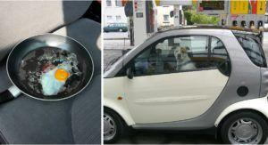 Egg Experiment Demonstrates The Danger Of Leaving A Dog In A Hot Car