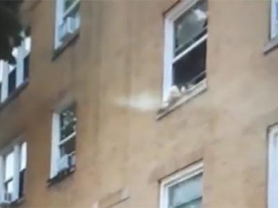 Bystanders rescue toddlers dangling out of window