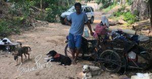 Man Spends His Life Carting Homeless Dogs Around The Country To New Families