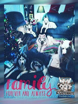 K9 Epilepsy Awareness: Family and Friends ~and~ Remembering Hu-Nanny & Gibson