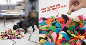 This Weird Looking Toy Will Be Your Dog's Best Friend on a Rainy Day