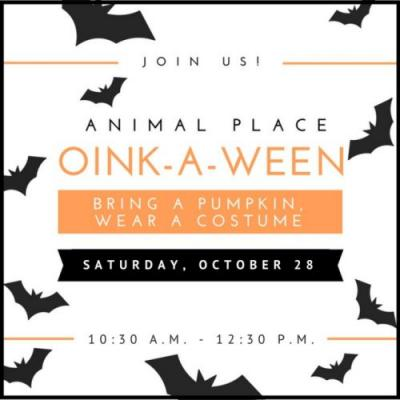 We can't wait for our 3rd annual Oink-a-ween!Mark your