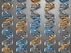 With Synthetic Biology Software, Geneticists Design Living Organisms From Scratch