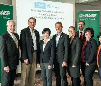 BASF and Glycosyn partnership to capitalise on HMO and gut health interest