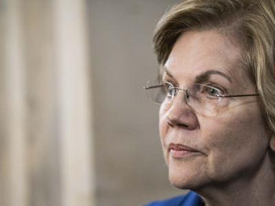 NBC/WSJ Poll Dragged for Omitting Warren from Head-to-Head Matchups vs. Trump, Bloomberg: 'Straight Up Malpractice'