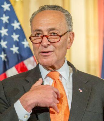 Senator Chuck Schumer Taken Away In Handcuffs While His Wife And Kids Cry Is Fake News
