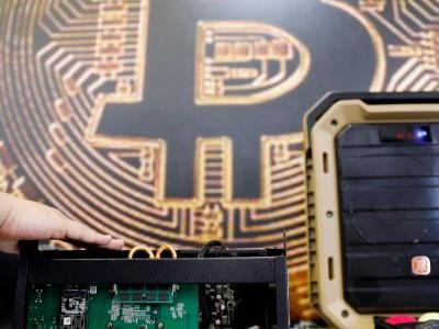 The biggest bitcoin trust brought in a record $608 million last year - and most of it was from hedge funds