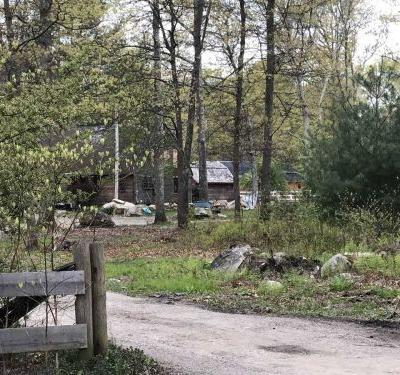 Report: 14-year-old boy mauled to death by dogs was taking care of animals on property