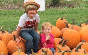 6-Year-Old Boy Sells Pumpkins To Raise Money For A Diabetic Alert Dog