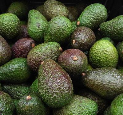 Grower recalls avocados sold in bulk in 6 states over possible listeria